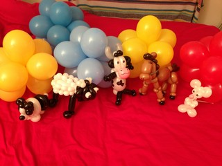 balloon sheepdog